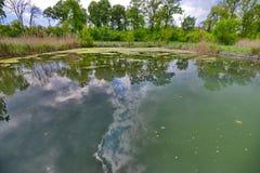 La piscina permanece con la reflexión del cielo de los baños de Someseni cerca de Cluj Foto de archivo