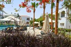 La piscine avec les chaises longues claires de l'eau bleue avec des parasols et les palmiers sur une mer chaude tropicale recoure photos stock