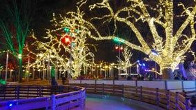 La pista de patinaje en el parque de la tarde, Viena, Austria almacen de video