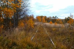 La pista ferroviaria vieja en la caída Fotografía de archivo
