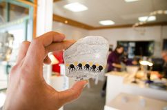 La pittura dipinta a mano del magnete del frigorifero del materiale illustrativo sulla pietra nel modello degli uccelli del kiwi  Immagini Stock Libere da Diritti