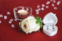 La piuma decorativa Wedding è aumentato fotografia stock