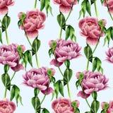 La pivoine d'aquarelle fleurit le modèle sans couture sur le fond bleu Texture florale pour la conception, le textile et le fond  Photographie stock libre de droits