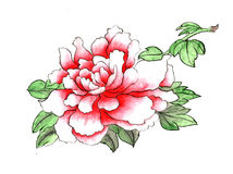 La pivoine peinte à la main décorative magnifique distinguée traditionnelle chinoise d'encre fleurit Photos libres de droits