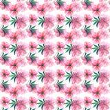 La pivoine rose de fines herbes florale de beau beau ressort merveilleux tendre mignon lumineux avec l'aquarelle de feuilles et d Photo libre de droits