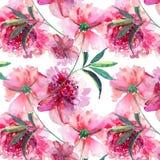 La pivoine rose de fines herbes florale de beau beau ressort merveilleux tendre mignon lumineux avec l'aquarelle de feuilles et d Photo stock