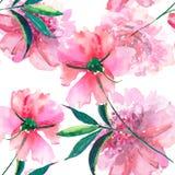 La pivoine rose de fines herbes florale de beau beau ressort merveilleux tendre mignon lumineux avec l'aquarelle de feuilles et d Image libre de droits