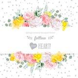La pivoine, s'est levée, narcisse, fleurs roses et carte décorative de conception de vecteur de feuilles d'eucaliptus Images stock