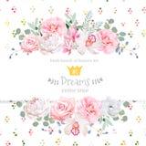 La pivoine, s'est levée, orchidée, camélia, fleurs roses et carte décorative de conception de vecteur de feuilles d'eucaliptus Photographie stock