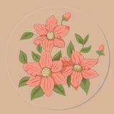 La placa con las flores de salvaje subió Imagenes de archivo
