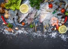 La placa de los mariscos con las gambas de los camarones de los crustáceos critica despiadadamente la cena gastrónoma del océano  fotografía de archivo