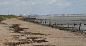 La plage au grain image stock