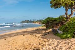 La plage dans Maui, Hawaï Image stock