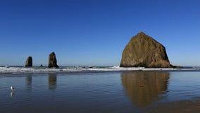 La plage de canon avec la roche de meule de foin et les aiguilles le long de l'Orégon marchent 1080p clips vidéos