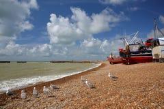 La plage a lancé des bateaux de pêche avec un beau ciel et des mouettes dans le premier plan, Hastings, R-U Photo stock
