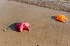 La plage ondule des étoiles de mer et des jouets colorés Images libres de droits