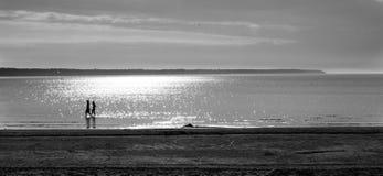 La plage, rivage Images libres de droits