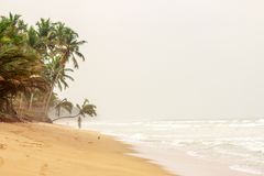 La plage sablonneuse, palmiers au-dessus de l'eau, barrière bancale, ondule Image stock