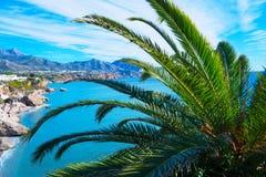La plage tropicale avec des palmiers s'approchent de la mer bleue Vacances d'été exotiques Temps beau Photos stock
