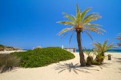 La plage Vai a appelé la plage de Bounty sur Crète Photos stock