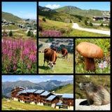 La Plagne nelle alpi francesi Fotografie Stock Libere da Diritti