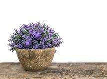 La planta artificial del primer en el pote para adorna en el escritorio de madera marrón viejo borroso aislado en el fondo blanco foto de archivo