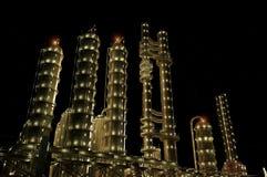 La planta en la noche. stock de ilustración