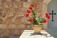 La planta en un pote con rojo florece la cruz del fondo foto de archivo
