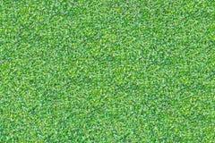 La planta verde de la enredadera en una pared Fotos de archivo