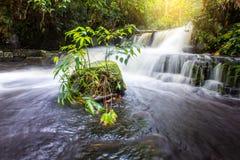 La planta verde y la roca frescas en Mun Dang Waterfall medio llueven el mar Foto de archivo libre de regalías