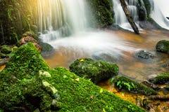 La planta verde y la roca frescas en Mun Dang Waterfall medio llueven el mar Fotos de archivo