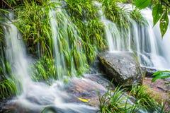 La planta verde y la roca frescas en Mun Dang Waterfall medio llueven el mar Fotografía de archivo libre de regalías