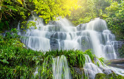 La plante verte et la roche fraîches dans Mun Dang Waterfall moyen pleuvoir la mer Photos libres de droits