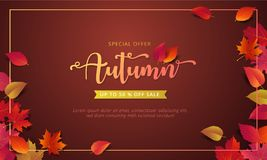 La plantilla de la disposición de la bandera de la venta del otoño adorna con el arce y las hojas realistas en color caliente ent libre illustration