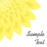 La plantilla de la flor Imagen de archivo libre de regalías
