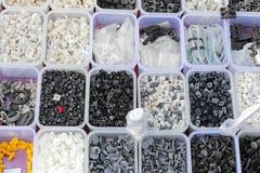 La plastica parte i vassoi Immagine Stock Libera da Diritti