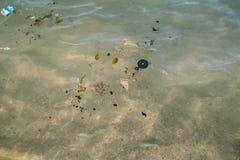 La plastica trashes il nuoto in rosso del mare fotografia stock