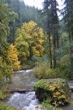 La plata cae parque de estado, Oregon Imagenes de archivo