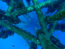 La plataforma remota del manantial costero del petróleo y gas bajo estructura de chaqueta de agua y el tubo de gas alinean Fotografía de archivo