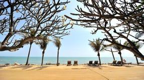 La playa Imagen de archivo libre de regalías