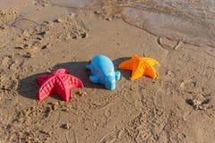 La playa agita estrellas de mar y los juguetes coloreados Imágenes de archivo libres de regalías