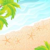 La playa arenosa y las palmeras Imagenes de archivo
