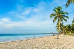 La playa de Paradise tambi?n llam? Playa Paraiso en la salida del sol - costa del Caribe hermosa y tropical de Tulum en Quintana  fotos de archivo