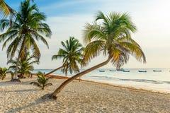 La playa de Paradise tambi?n llam? Playa Paraiso en la salida del sol - costa del Caribe hermosa y tropical de Tulum en Quintana  foto de archivo