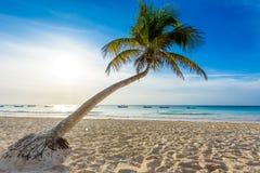 La playa de Paradise tambi?n llam? Playa Paraiso en la salida del sol - costa del Caribe hermosa y tropical de Tulum en Quintana  imágenes de archivo libres de regalías