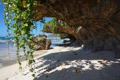 La playa de Sandy con las vides cuelga abajo de rocas Fotos de archivo
