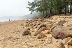 La playa del mar Báltico en Repino cerca de St Petersburg Fotografía de archivo libre de regalías