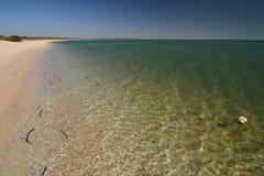 La playa en el mono Mia Bahía del tiburón Australia occidental imágenes de archivo libres de regalías