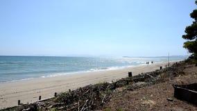 La playa en verano almacen de video