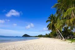 La playa hermosa con el coco Fotografía de archivo